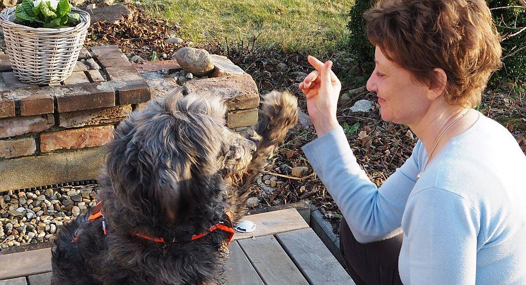 Mensch-Tier Kommunikation, Carola mit Hund Fenja