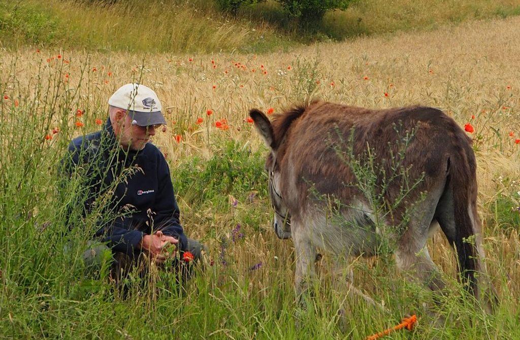 Mensch-Tier- Kommunikation Michael und Esel
